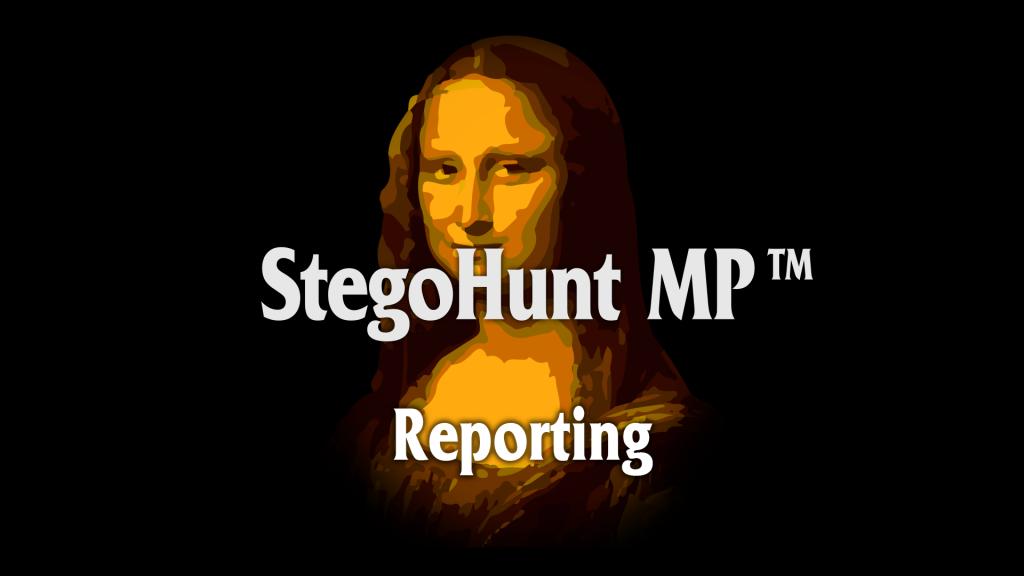 StegoHunt MP: Reporting